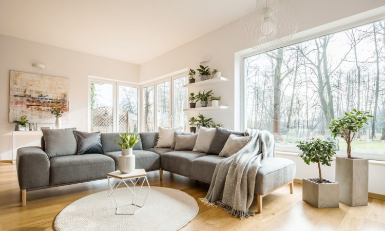 Furniture that can not be missing at your first home